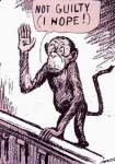 monkey-trial-cartoon
